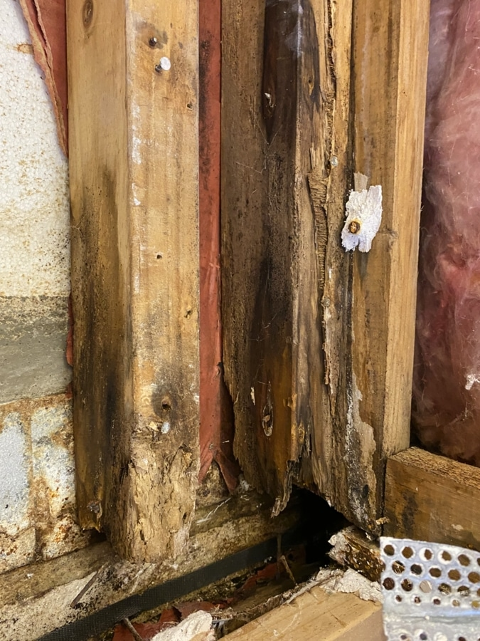 Decayed wood hidden inside a wall that was found using a Mdu Moisture Probe